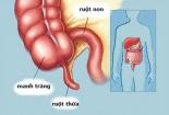 5 bộ phận vô dụng nhất trên cơ thể con người