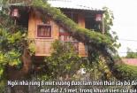 Người đàn ông làm nhà trăm triệu đồng trên cây bồ đề