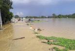 Ngoại thành Hà Nội chìm trong biển nước