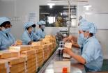 Dược Âu Cơ nâng cao năng suất chất lượng nhờ áp dụng Kaizen