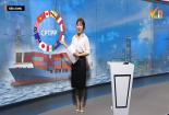 Bản tin Tiêu dùng: CPTPP và tác động đến nền kinh tế Việt Nam