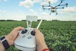 Áp dụng trí tuệ nhân tạo giúp tăng năng suất trong nông nghiệp