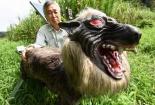 Robot chó sói bảo vệ mùa màng ở Nhật Bản