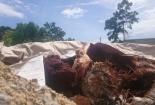 Phát hiện công ty chôn lấp hàng trăm tấn chất thải nguy hại