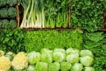 Giá rau tại Đà Nẵng tăng cao sau mưa lớn