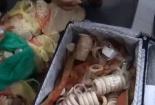 Đột kích cơ sở đổ buôn socola và phát hiện điều kinh hoàng