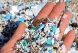 Nhựa siêu vi - Mối nguy hại lớn đối với môi trường