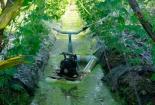 Lão nông miền Tây sáng chế máy tưới nước tự động giá rẻ bất ngờ