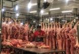 Giá lợn tăng phi mã, lo khủng hoảng dịp Tết