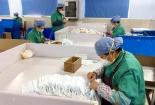 Doanh nghiệp tăng ca sản xuất khẩu trang cho thị trường