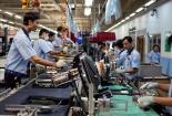 Doanh nghiệp Việt có cân được tiêu chuẩn chất lượng EU