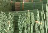 Nông sản Việt thích ứng rào cản kỹ thuật trong FTA