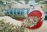 Xuất khẩu tôm sang Trung Quốc tăng mạnh nhất 5 năm qua