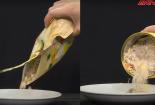 Sự thật hết hồn về ngũ cốc mix hạt giảm 3-5kg