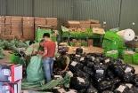 6 tháng, xử lý hơn 75.000 vụ buôn lậu, gian lận thương mại