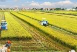 Tiêu chuẩn an toàn giúp cộng đồng nông nghiệp canh tác