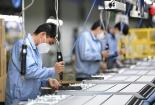Bộ Kế hoạch và Đầu tư: Có thể kéo dài chính sách hỗ trợ doanh nghiệp sang năm 2021