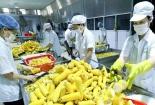 Hậu kiểm thực phẩm nông sản còn bất cập