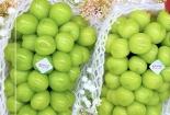 OMIYAGE FRUI&MORE Xuân La bán trái cây nhập khẩu không rõ nguồn gốc?