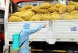 Hải Dương đề nghị hỗ trợ tiêu thụ nông sản trong bối cảnh cách ly xã hội