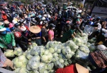 Hải Dương kết nối, hỗ trợ tiêu thụ nông sản cho nông dân