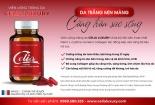 Thực phẩm bảo vệ sức khỏe: 'Quảng cáo một đằng, trách nhiệm một nẻo'
