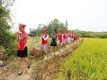 Loạt ảnh các nữ tiếp viên hàng không xinh đẹp lội ruộng, gặt lúa 'gây sốt'