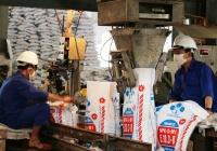 Bộ KH&CN hỗ trợ nông dân và doanh nghiệp xây dựng tiêu chuẩn chất lượng sản phẩm - ảnh 2