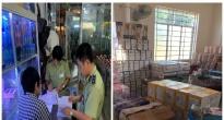 http://vietq.vn/thu-giu-luong-lon-banh-keo-son-mong-tay-vi-pham-ve-nguon-goc-xuat-xu-d164803.html