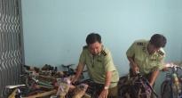 http://vietq.vn/tam-giu-16-chiec-xe-dap-the-thao-tai-an-giang-d175856.html