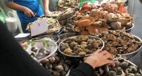 http://vietq.vn/hoa-khon-luong-tu-thit-oc-ca-khoai-tam-hoa-chat-d183163.html