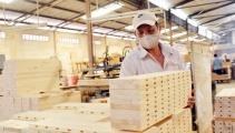 Bộ Công Thương đề nghị hủy điều tra với cáo buộc gỗ dán Việt Nam bán phá giá
