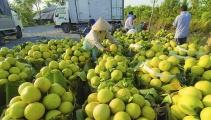Đẩy mạnh tiêu thụ sản phẩm hàng hóa đạt Thương hiệu quốc gia Việt Nam