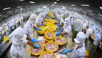 Đảm bảo tiêu chuẩn chất lượng thủy sản, tạo tiền đề ổn định xuất khẩu
