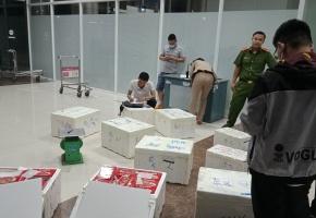 Thu giữ 214kg dâu tây không rõ nguồn gốc ở sân bay Liên Khương