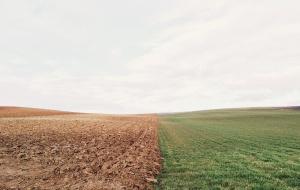 Tạo ra ứng dụng mới để cải thiện chất lượng đất nông nghiệp