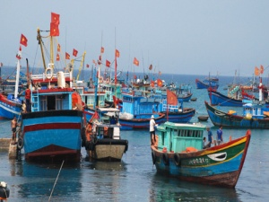 Vay vốn đóng tàu mới: Ngư dân toàn quyền quyết định