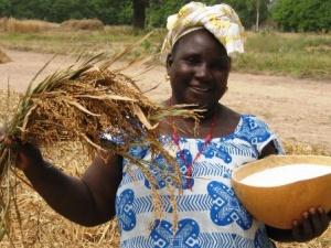 Kinh nghiệm cải thiện năng suất nông nghiệp ở Uganda
