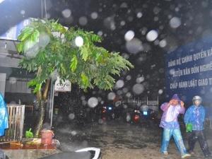 Tin mới nhất về bão số 3: Toàn cảnh Hải Phòng và Quảng Ninh khẩn trương đối phó bão Kalmaegi