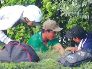 Phó Giám đốc Công an TPHCM: Đa số kẻ cướp, trộm nghiện ma túy