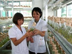 """Cán bộ Trung tâm KH Quảng Ninh: """"Yêu nghề, khó khăn cũng không bỏ được!"""""""
