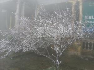 Dự báo thời tiết ngày mai 23/12: Nhiệt độ miền bắc tiếp tục giảm, trời rét đậm