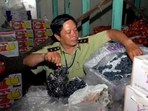 Bắt giữ hơn 30 tấn hoa quả, nước ép trái cây hư thối