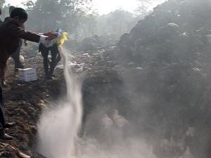 Quảng Trị: Phát hiện, tiêu hủy cả tấn gà 'vượt biên'