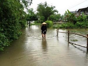 Cần đề phòng lũ lụt sớm bất thường ở Quảng Trị