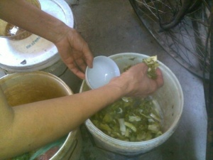 Hiểm họa khôn lường khi ăn dưa cà muối
