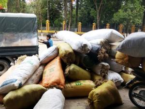 Thực hư chuyện thu mua rêu đá của thương lái Trung Quốc