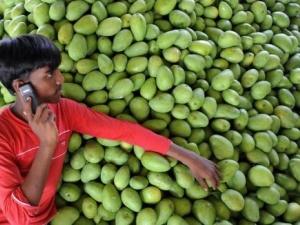 Ấn Độ: Tăng năng suất lao động nhờ các dịch vụ điện thoại đơn giản