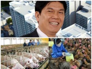 Tập đoàn Hòa Phát theo chân bầu Đức đi 'nuôi lợn'