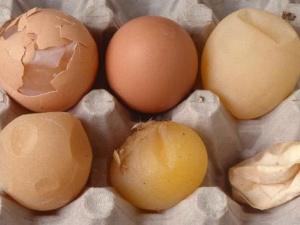 Trứng gà, vịt hết hạn liệu có gây ung thư?